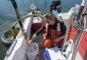 a pump method to collect for plankton