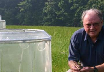 Bert Drake with chamber in Global Change Research Wetland