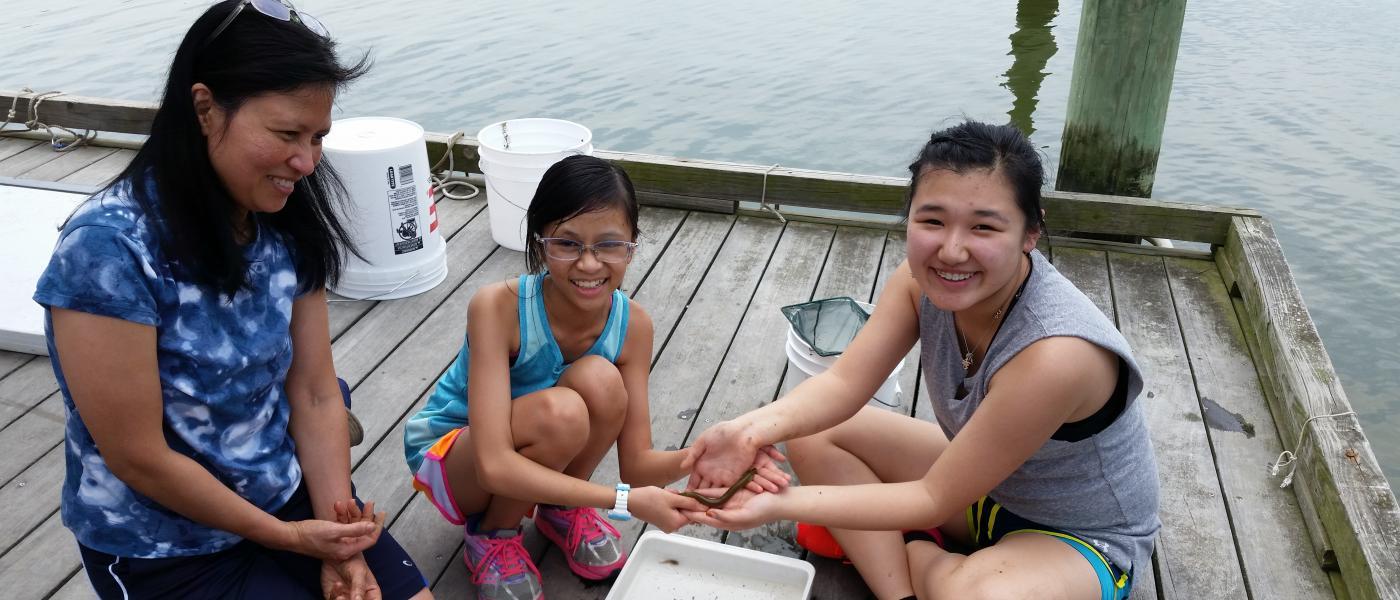 Group measuring fish