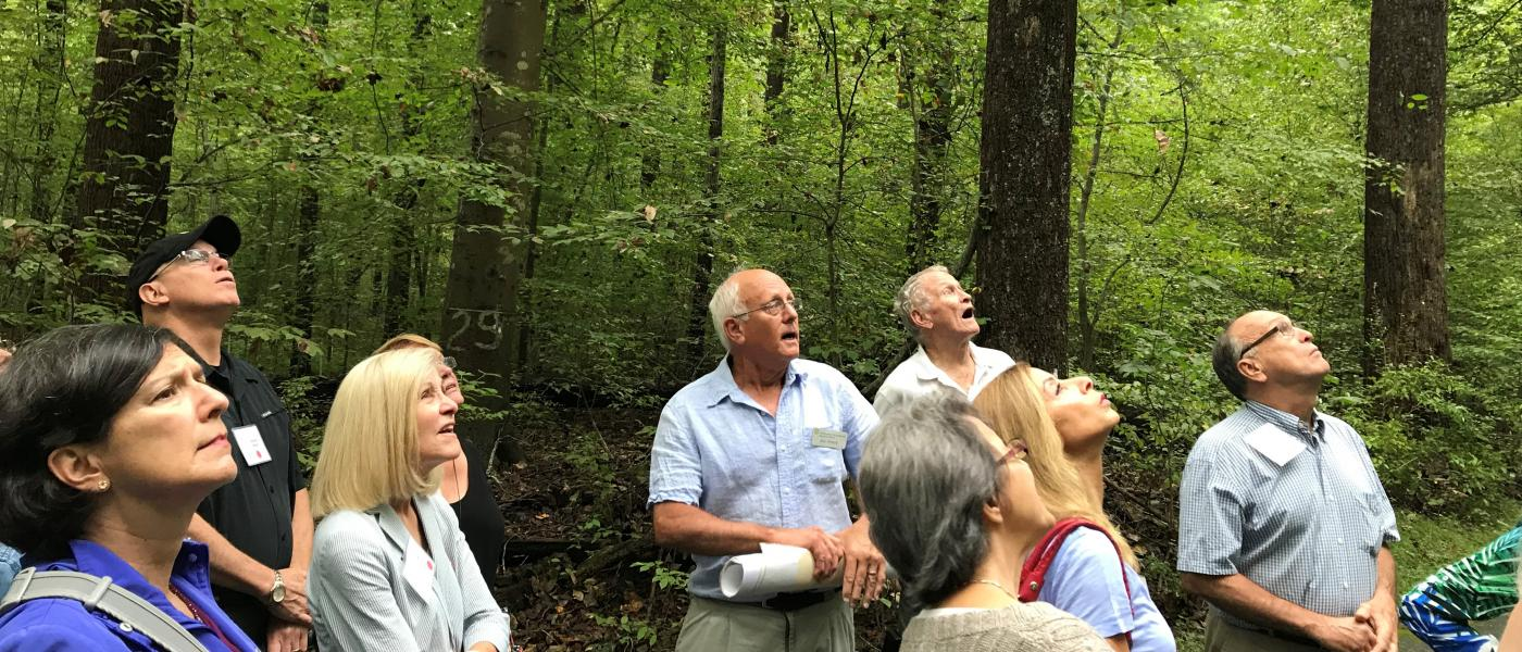 Man leading adults through forest