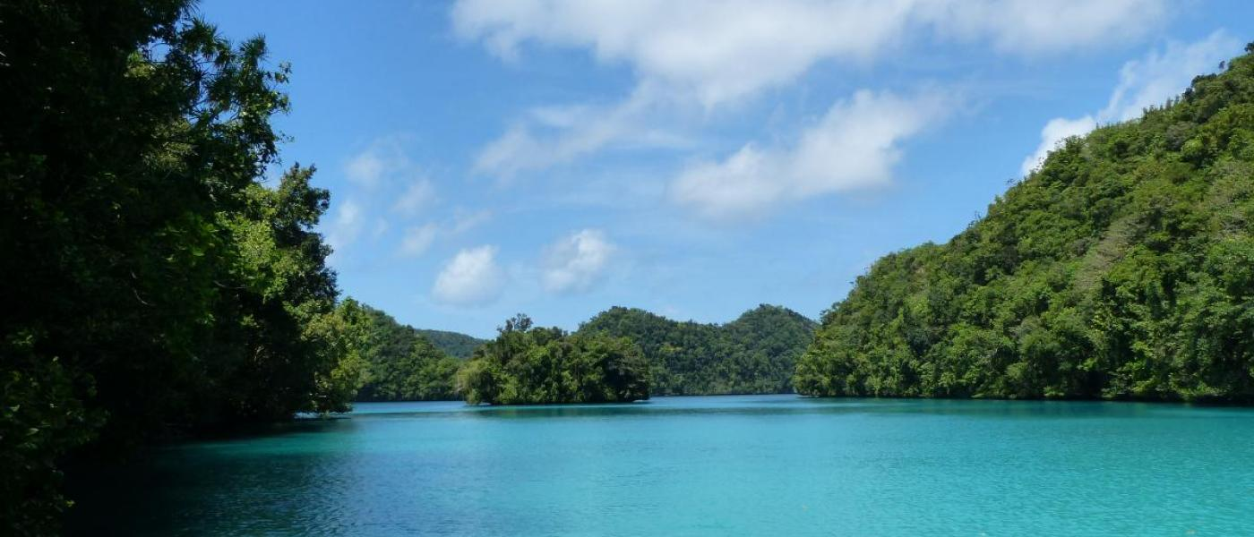 The rock islands of Palau, surrounded by bright blue water.