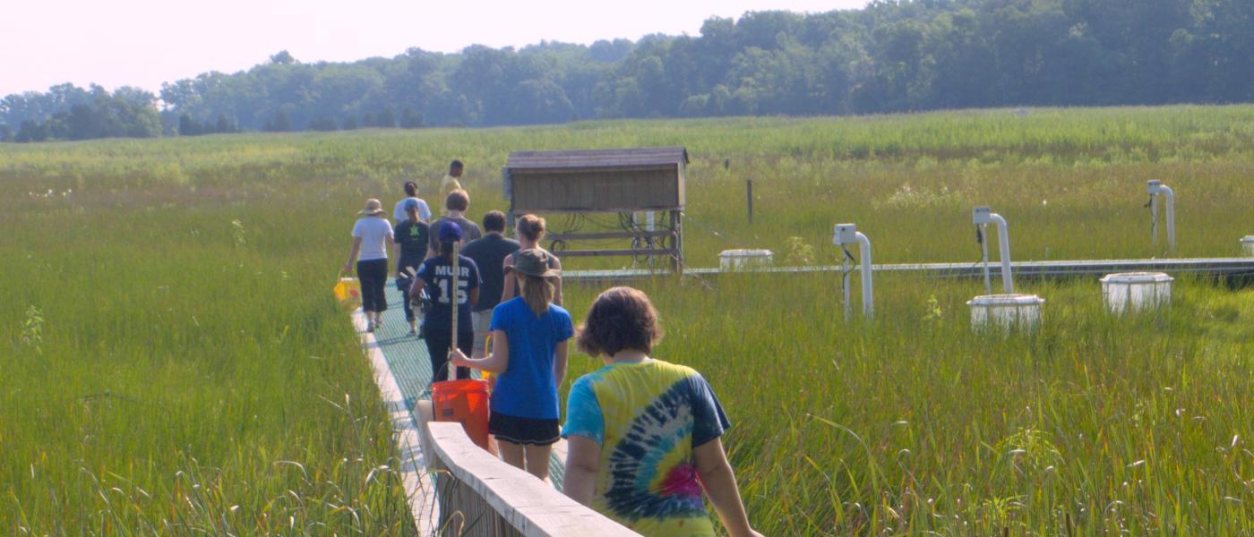 People walking on the boardwalk through the salt marsh