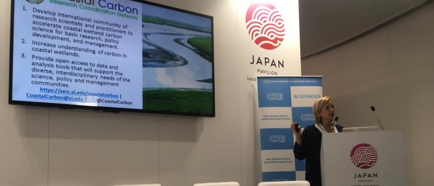 Steering Committee member Emily Pidgeon present that Coastal Carbon Network at COP24