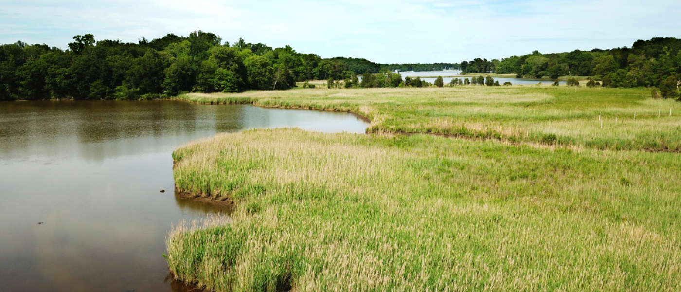 Overlook of the Rhode River from the Global Change Research Wetlands (GCReW).