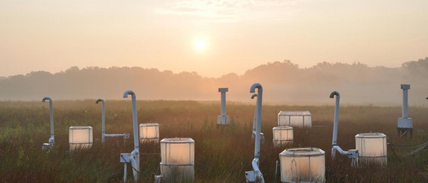 marsh chambers at sunrise