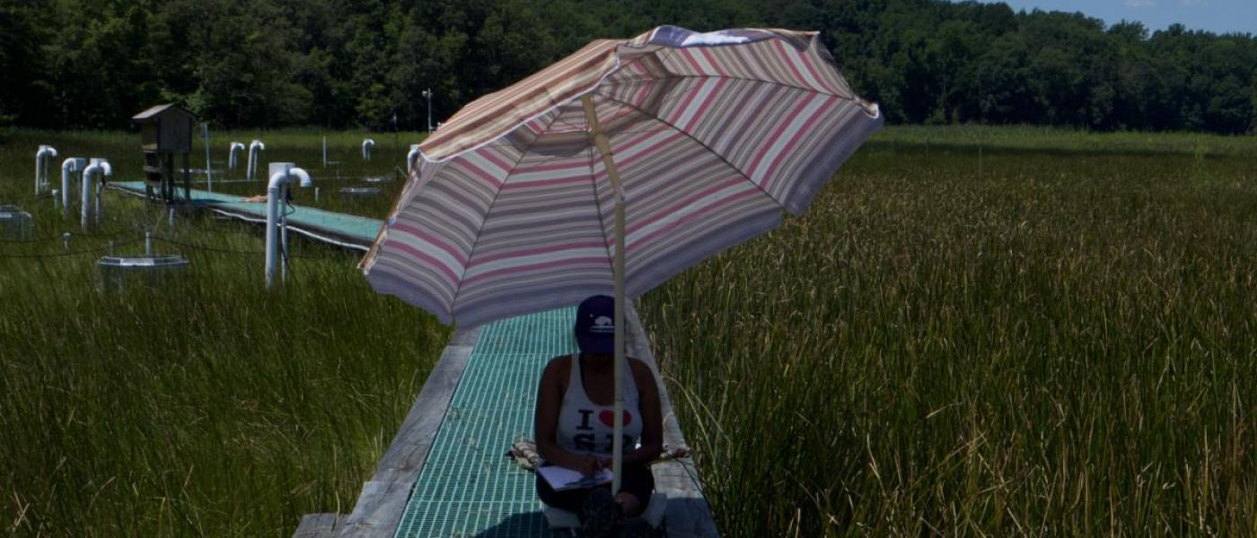 Intern with an umbrella on the boardwalk