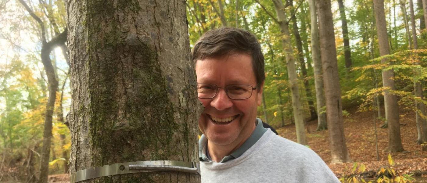 volunteer measuring tree band smile