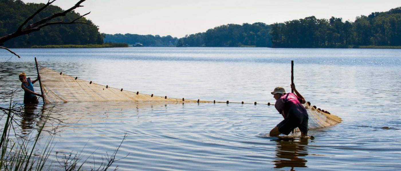 MarineGEO SERC seining Rhode River