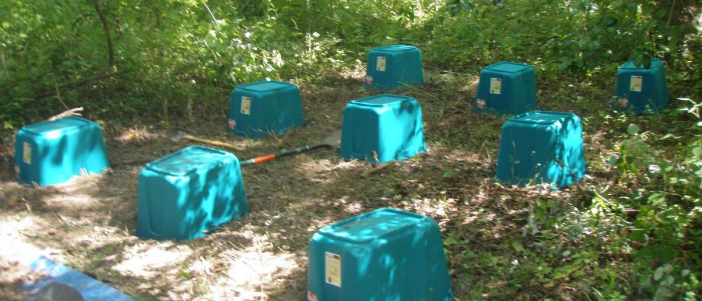 blue crates in forest