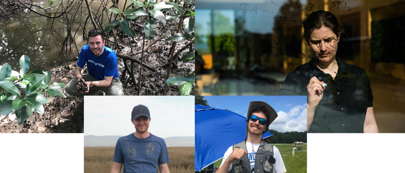 Collage of four photos: Three of scientists in the field; one scientist doing math on a glass wall