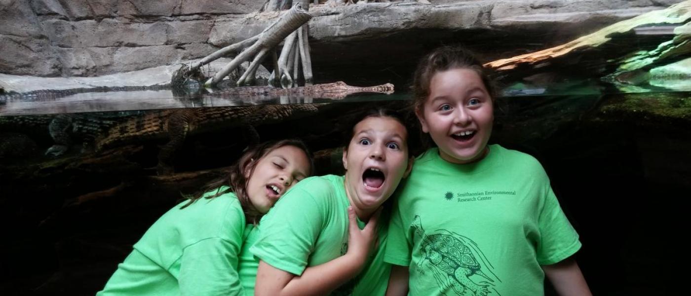 Kids from school group in front of alligator aquarium display at Baltimore Aquarium