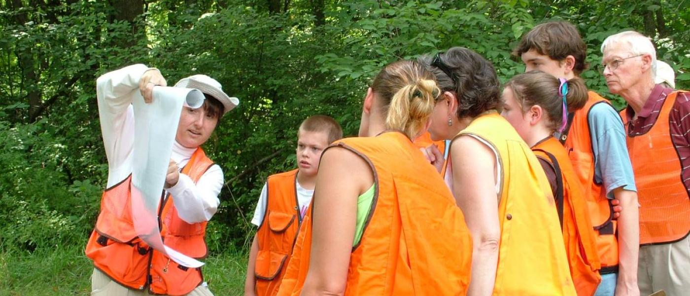 Group program learning about forest ecology