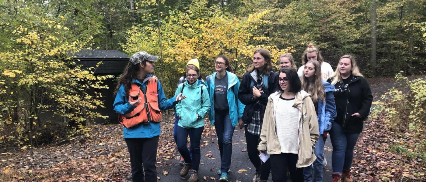 Group of young adults walking through forest path in autumn