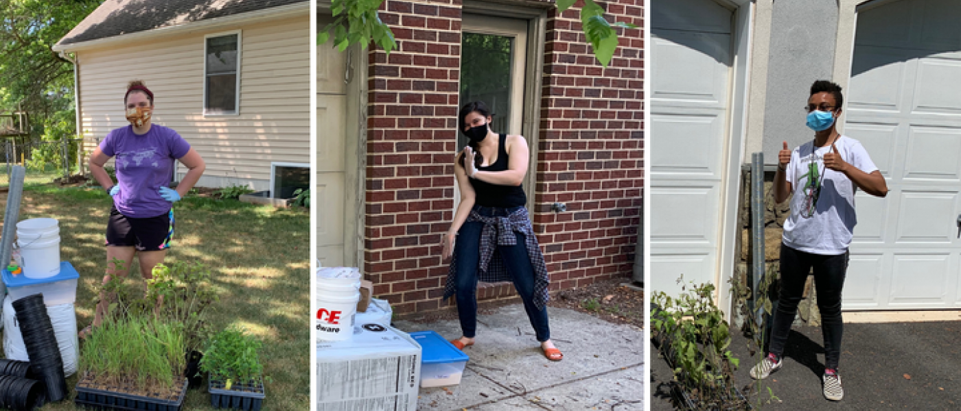 Three snapshots of interns in masks doing science experiments behind their houses