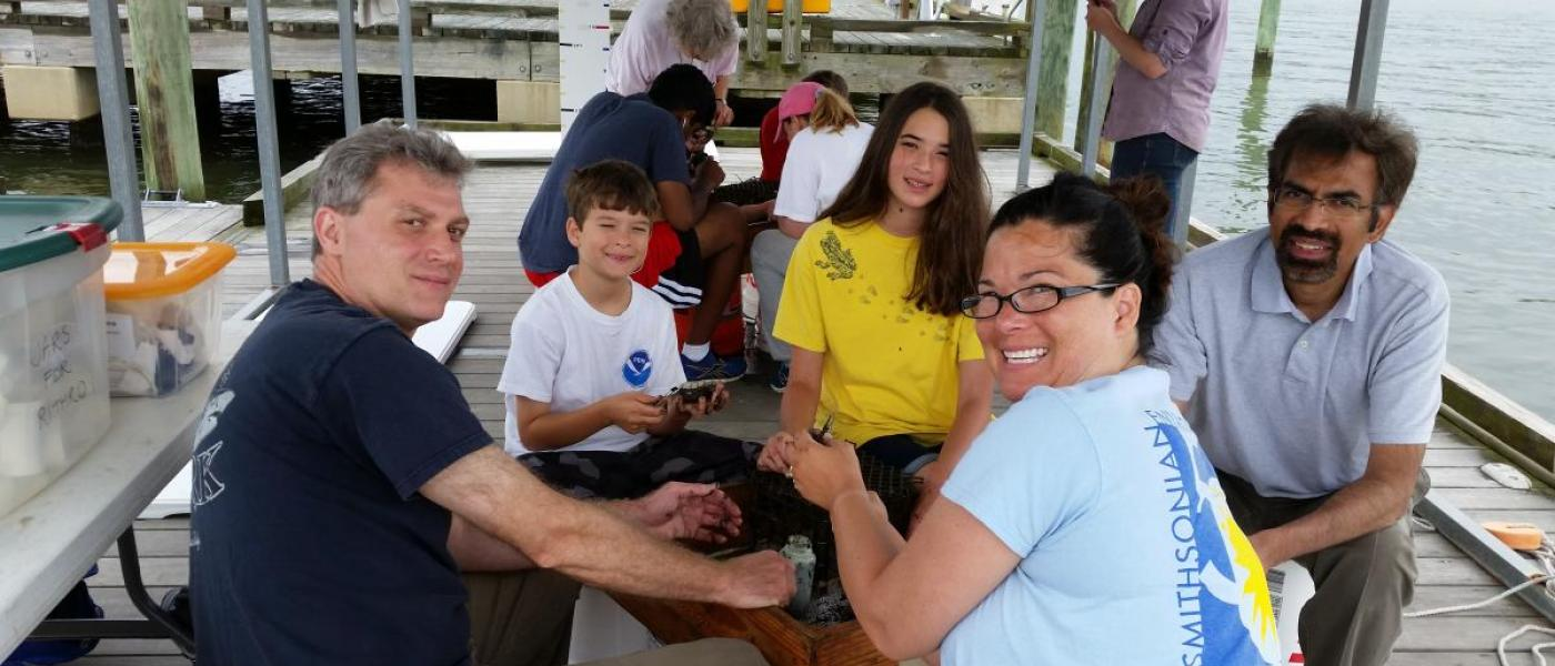 Volunteers sorting mud crabs