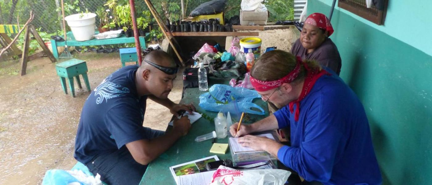 Researchers processing plant samples.