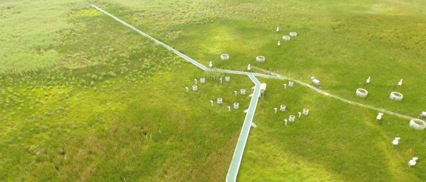 Aerial view of GCREW wetland site