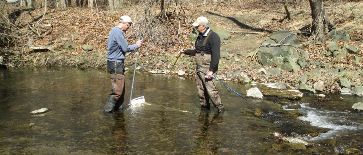 Citizen scientists collecting stream data
