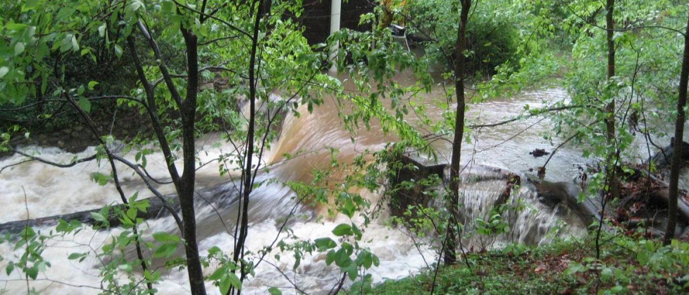 SERC weir in a stream.