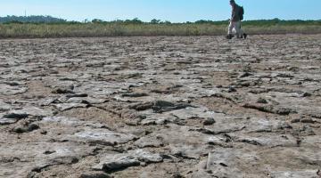 cyanobactera mat, Port Douglas, QLD