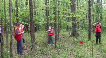 Orange-vested volunteers in forest
