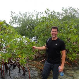 John Parker collecting mangroves in Panama